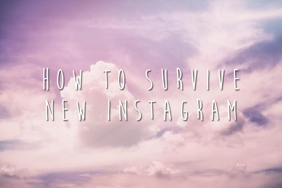 Instagram Feed Optimization: 5 Ways to Dominate the New Algorithm Update