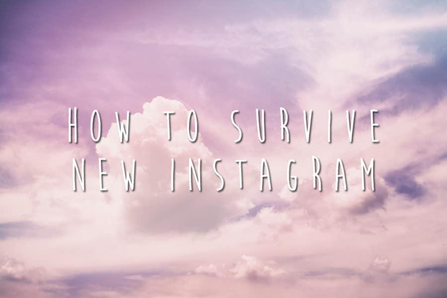 dominate the new instagram algorithm